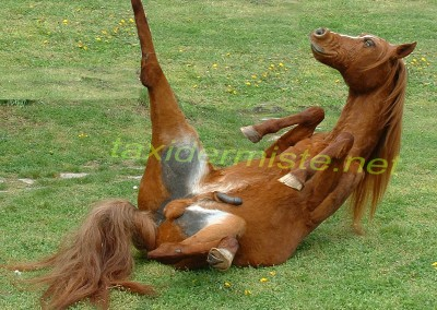 Cheval taxidermie pour Jackie Kaiser